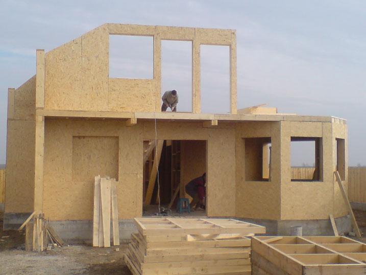 Poze-case-din-lemn-B17